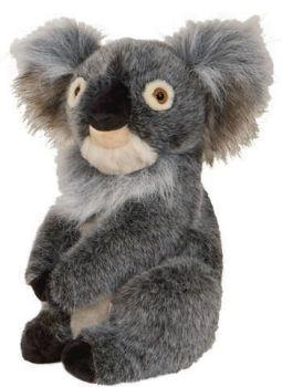 Daphne Headcover Koala